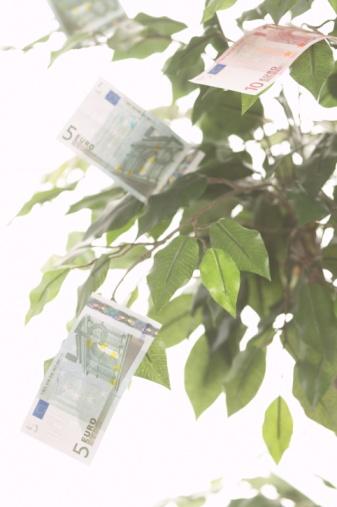 Bedrijfsfinanciering door investeerders en de nadelen Bedrijfsfinancieringen.INFO